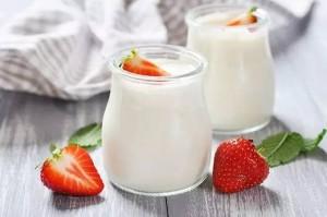 holidale-yogurt-wiki2