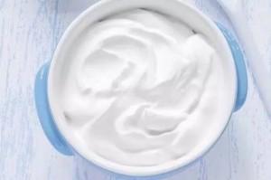 holidale-yogurt-wiki4