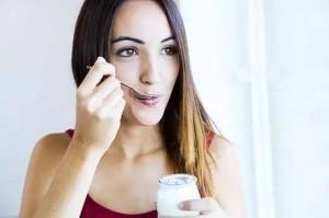 holidale-yogurt-wiki7